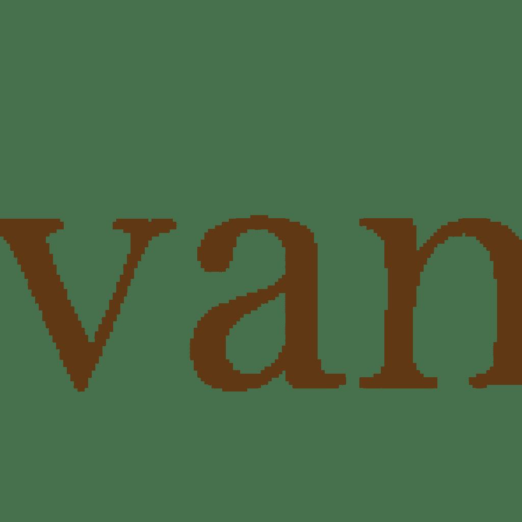 SPONSOR-lettie_pate_evans_foundation
